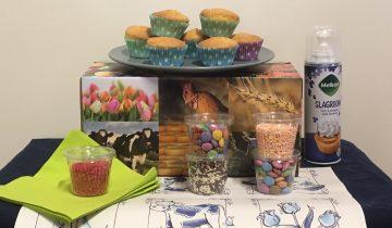 Afhaal knutselpakketten voor kinderfeestjes